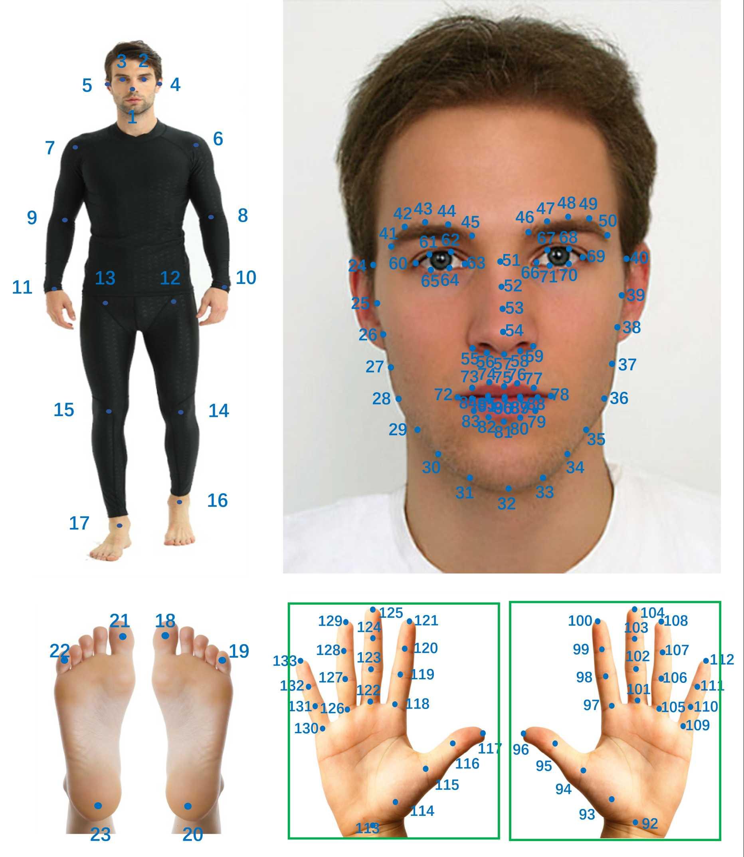 姿态估计 – COCO-WholeBody数据集骨骼关节keypoint标注对应